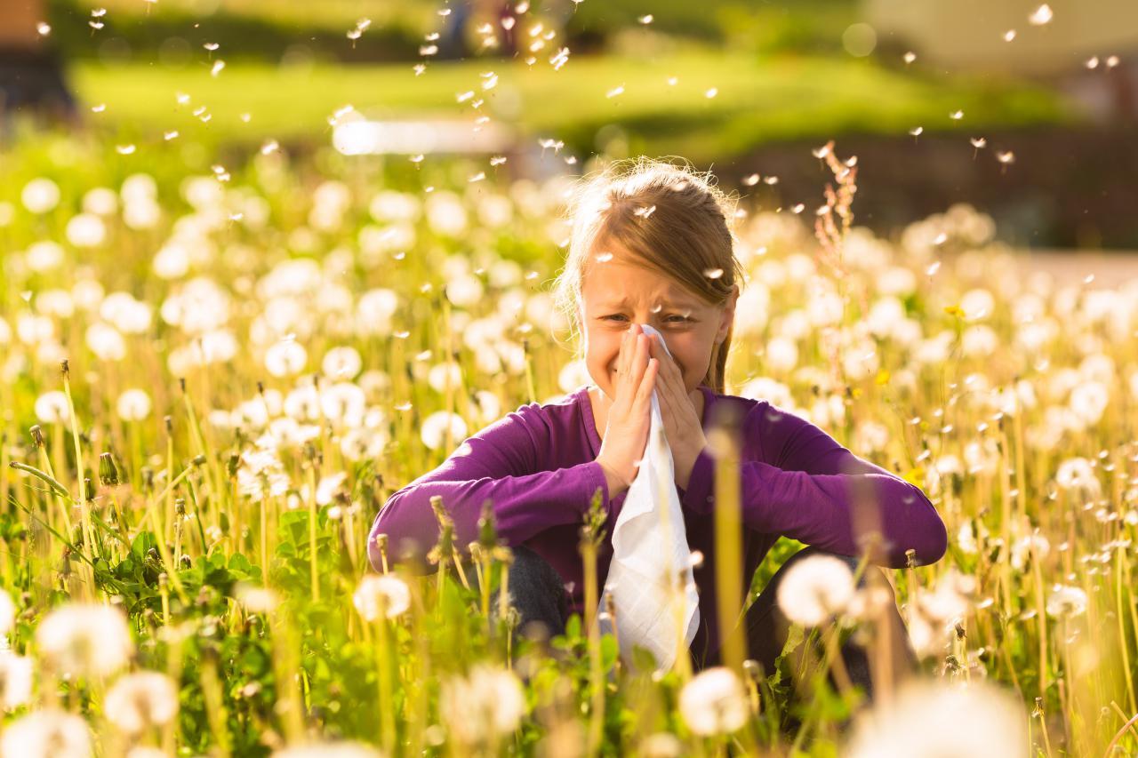 Cura e prevenzione delle allergie con la medicina ayurvedica