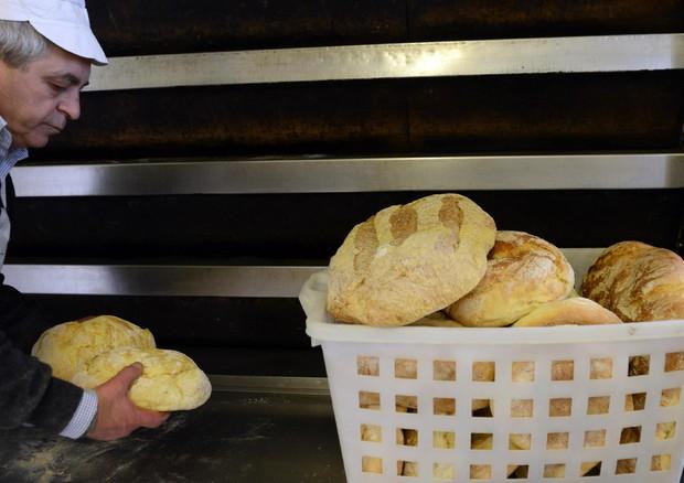 Giubileo: nasce il pane dell'accoglienza di Roma