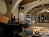 Museo di Rapolano
