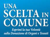 banner del progetto Una scelta in Comune
