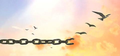catena spezzata che si trasforma in uccelli
