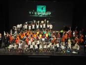L'Orchestra El sistema