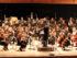 Viotta Symphony Orchestra