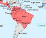 zika virus in brasile