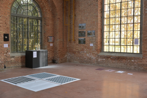 Mr. Richichi alla Biennale di Venezia
