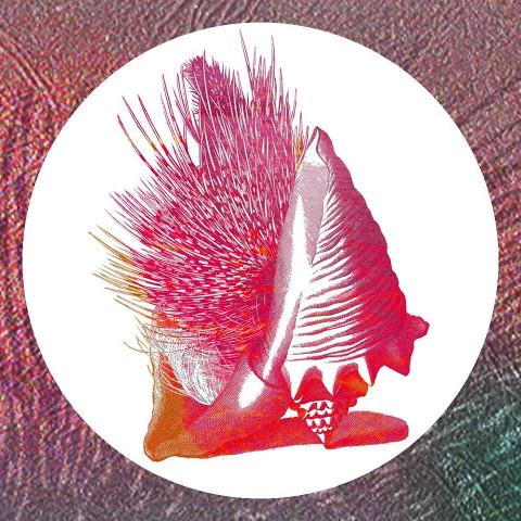 """""""L'orbita delle vite interrotte"""", album di debutto del duo The Asterhystrix"""