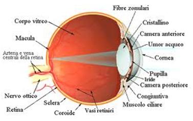 Settimana mondiale del glaucoma, a Barberino di Mugello