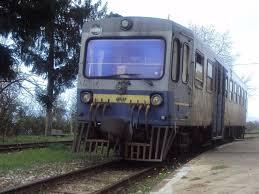 treno nella Sila