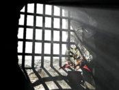 pianta in carcere