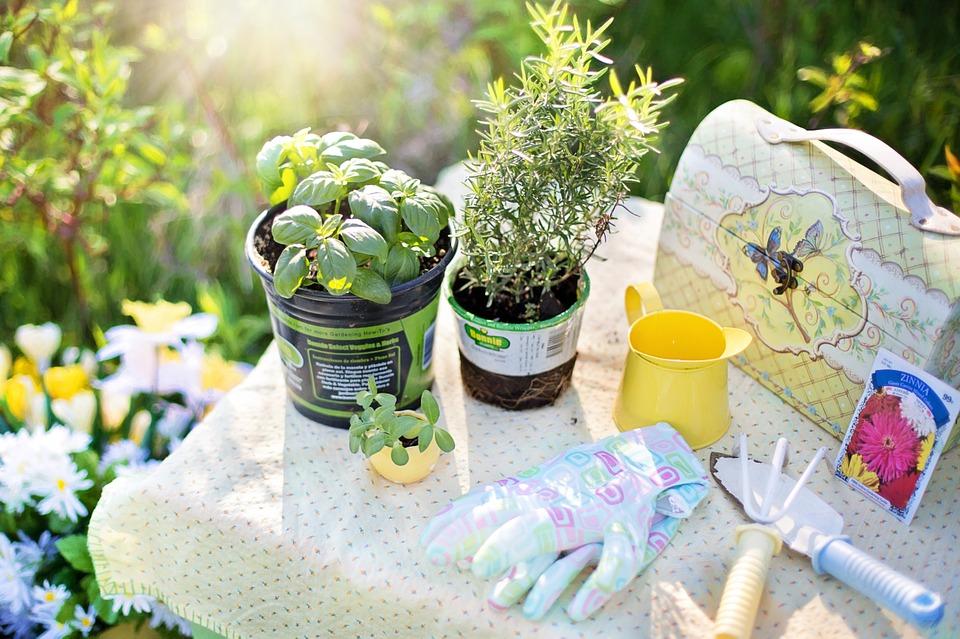 Fare giardinaggio fa bene alla salute e all'umore