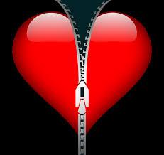cuore con zip