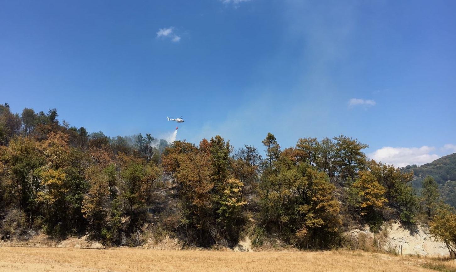 In due giorni a fuoco diversi ettari di bosco e terreni agricoli