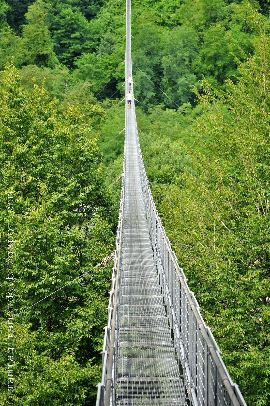 Il ponte sospeso più lungo d'Italia è in Toscana