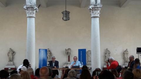 starnone e cirri a Mantova