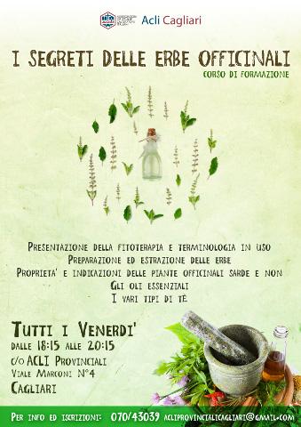 Corso sui segreti delle piante officinali a Cagliari