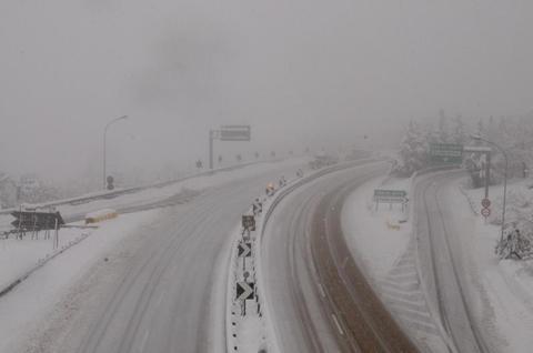 Neve in Mugello: passi Giogo e Colla off limits per alberi caduti, interventi in corso