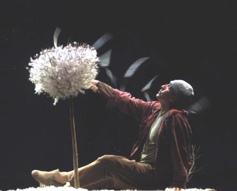 """Poggibonsi: a teatro con """"Pollicino"""""""