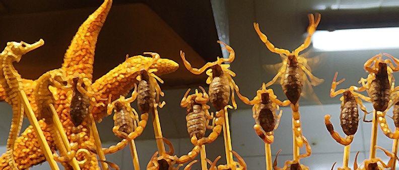Non compreremo scorpioni fritti al supermercato