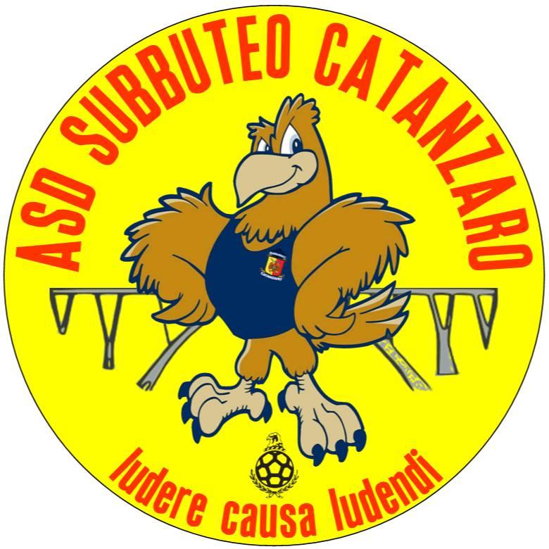 Subbuteo Catanzaro, Cronaca di un'impresa