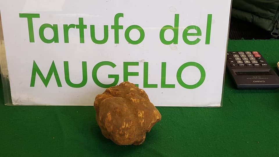 Mugello: Borgo San Lorenzo profumerà di tartufo a metà novembre