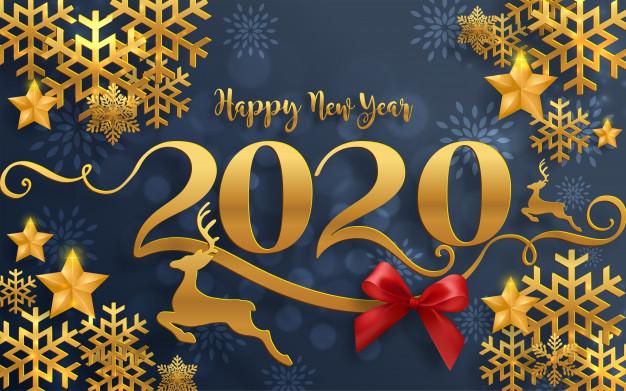 Buon anno! Grazie per essere stati con noi nel 2019. SOSTENETE IL NOSTRO LAVORO!
